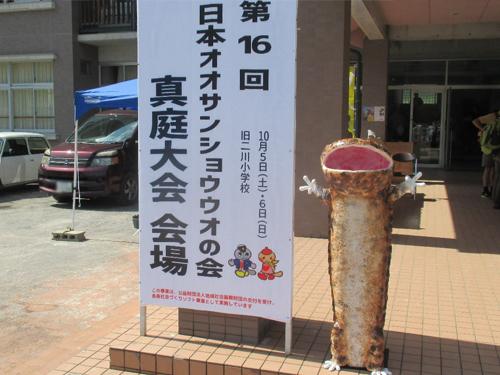 パネル展示を行いました! 日本オオサンショウウオの会 真庭大会
